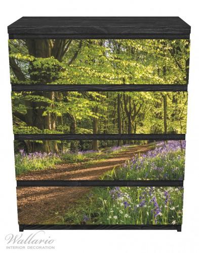 Möbelfolie Blaues Hasenglöckchen im Sommerwald – Bild 1