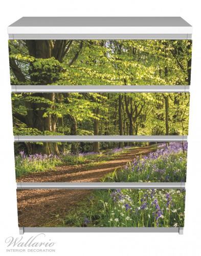 Möbelfolie Blaues Hasenglöckchen im Sommerwald – Bild 2