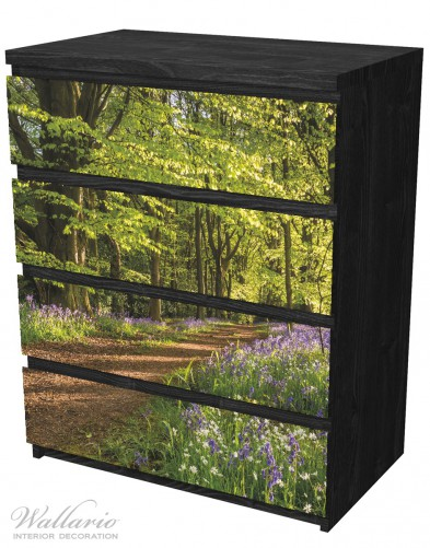 Möbelfolie Blaues Hasenglöckchen im Sommerwald – Bild 4