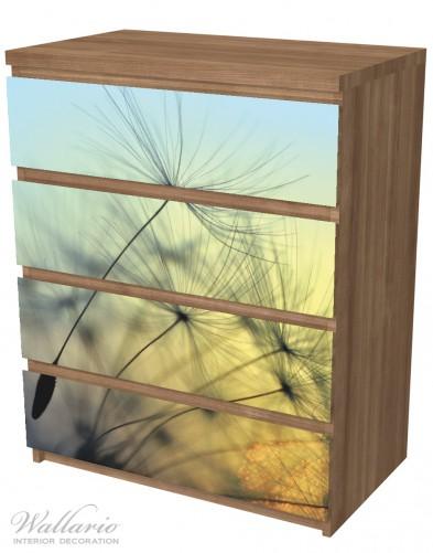 Möbelfolie Samen der Pusteblume in Nahaufnahme vor blauem Himmel – Bild 6