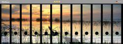 Ordnerrücken Sticker Schilf am Abend - Sonnenuntergang über der Seelandschaft