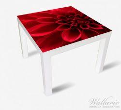 Möbelfolie Rote Dahlienblüte in Nahaufnahme – Bild 2