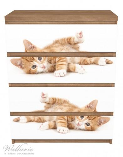Möbelfolie Süße Katze mit großen Augen - rot weiß getigert – Bild 3