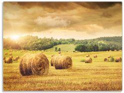 Glasunterlage Strohballen auf dem Feld bei Sonnenuntergang – Bild 1