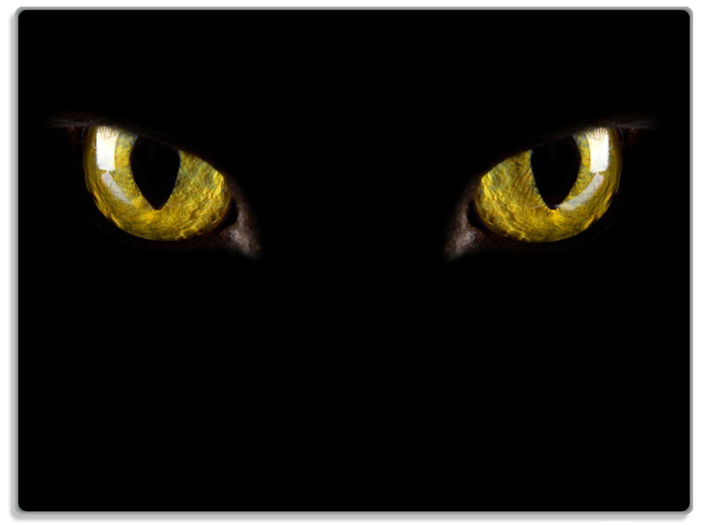 Glasunterlage Gelb leuchtende Katzenaugen bei Nacht – Bild 1