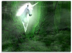 Glasunterlage Weißes Einhorn im grünen Wald – Bild 1
