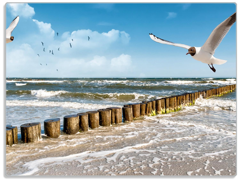 Glasunterlage Fliegende Möwe am Strand – Bild 1