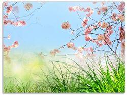 Glasunterlage Kirschblütenzweige und grüne Wiese- Frühling – Bild 1