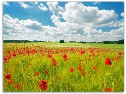 Glasunterlage Grüne Wiese mit Mohnblumen – Bild 1