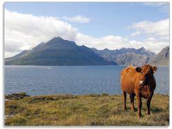 Glasunterlage Kuh in den Bergen – Bild 1