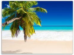 Glasunterlage Südseestrand in der Karibik mit Palme – Bild 1