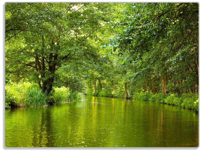 Glasunterlage Spreewald in Brandenburg  grüne Wälder und Spiegelungen im Wasser – Bild 1