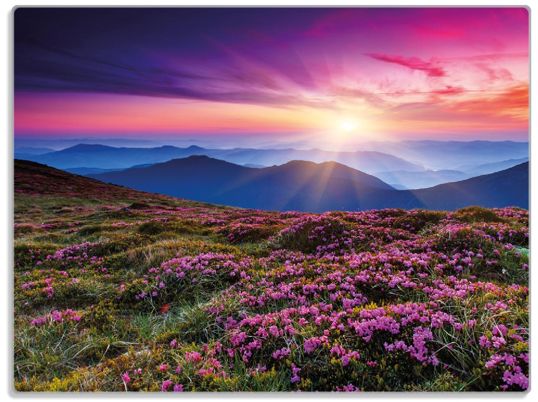 Glasunterlage Blumenbedeckte Wiese bei Sonnenuntergang – Bild 1