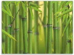 Glasunterlage Grüner Bambuswald – Bild 1