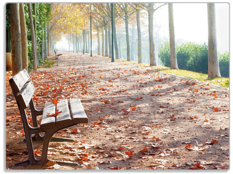 Glasunterlage Einsame Parkbank an einer Allee - Herbststimmung – Bild 1