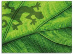 Glasunterlage Gecko Schatten auf grünem Blatt - Umriss – Bild 1