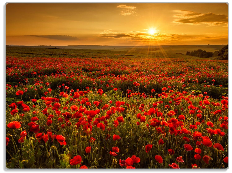 Glasunterlage Mohnblumenwiese bei Sonnenuntergang am Abend – Bild 1