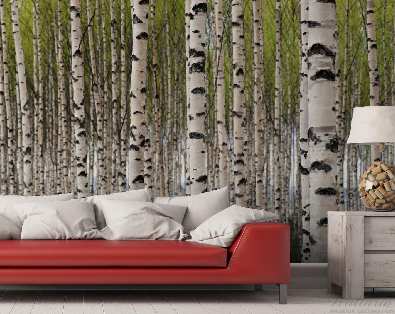 Vliestapete Birkenwald - Baumstämme in schwarz weiß – Bild 2