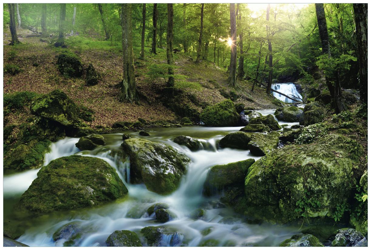 Vliestapete Fließender Bach im Wald bei Sonnenuntergang – Bild 1