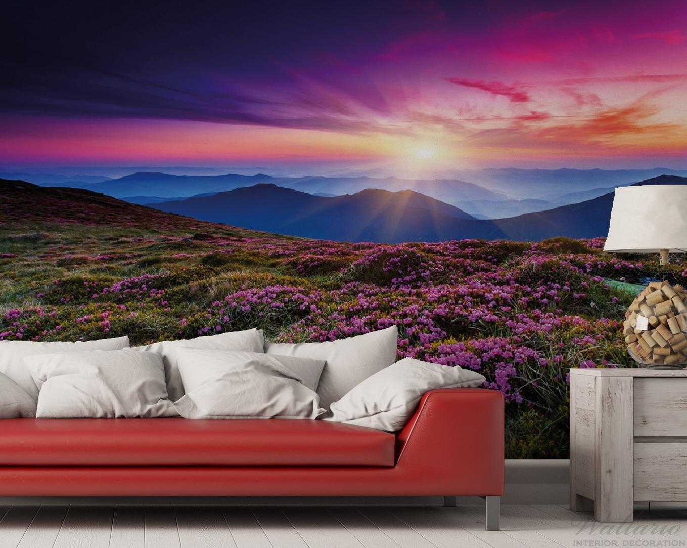 Vliestapete Blumenbedeckte Wiese bei Sonnenuntergang – Bild 2