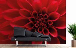 Vliestapete Rote Dahlienblüte in Nahaufnahme – Bild 3