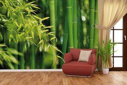 Vliestapete Bambuswald mit grünen Bambuspflanzen – Bild 4