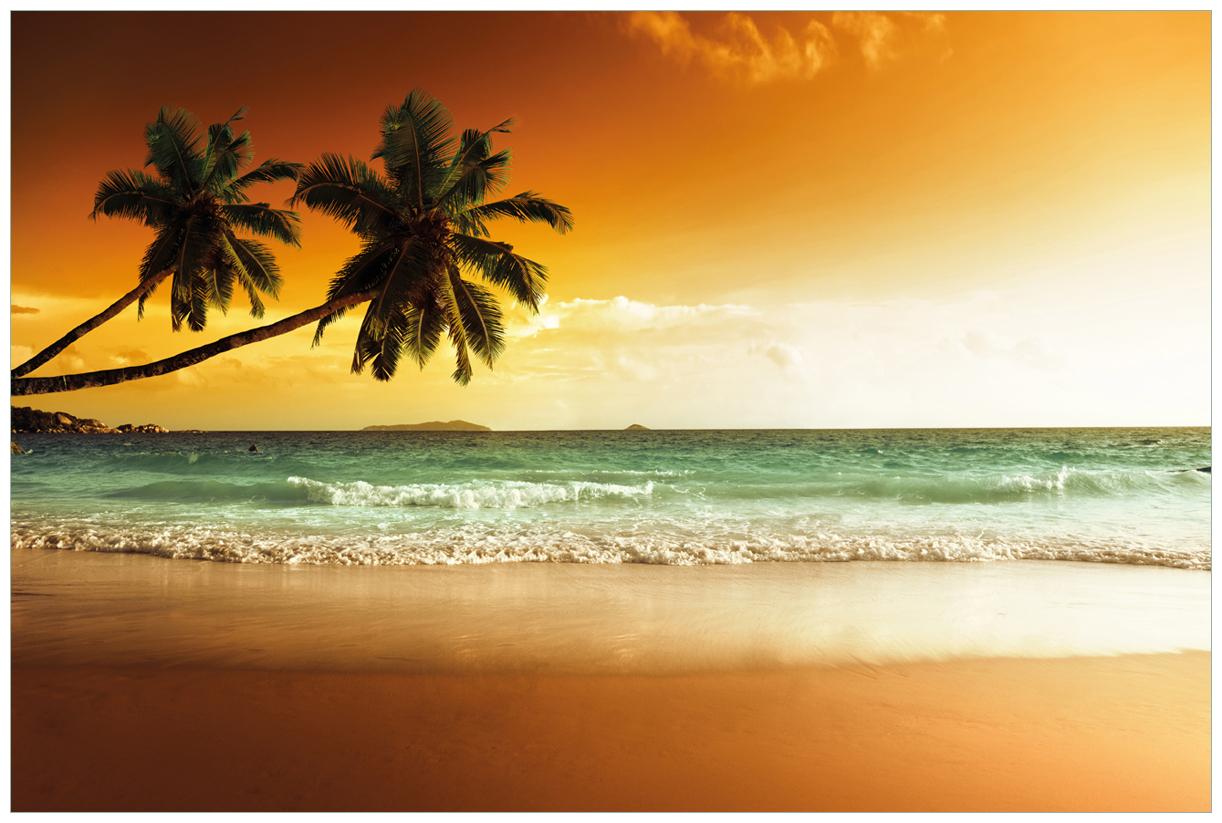 Vliestapete Palmen am Sandstrand bei untergehender Sonne – Bild 1