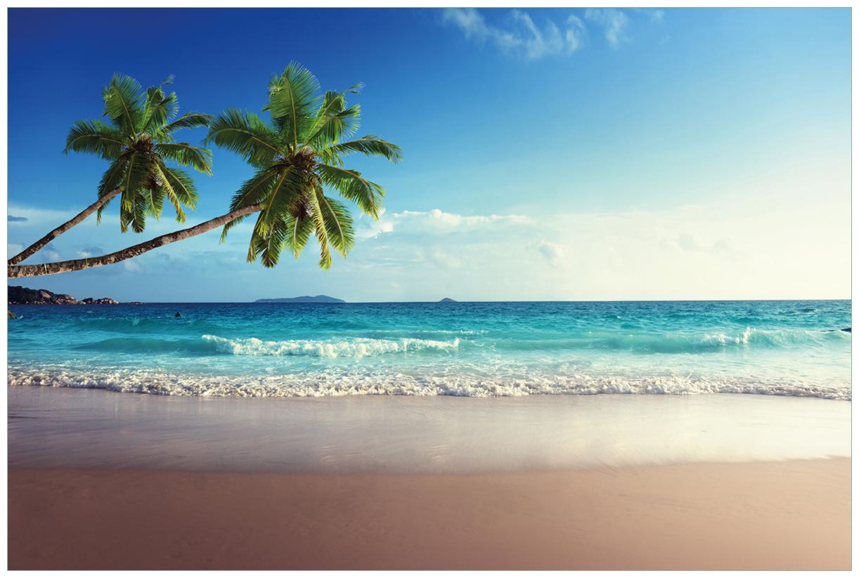 Vliestapete Sandstrand auf den Seychellen - Urlaub unter Palmen – Bild 1