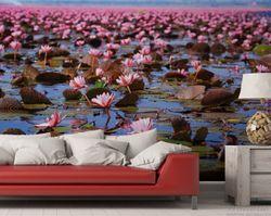 Vliestapete Seerosenlandschaft mit rosa Blüten – Bild 2