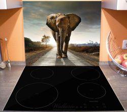 Herdabdeckplatte Elefant bei Sonnenaufgang in Afrika – Bild 3