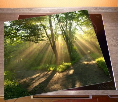 Herdabdeckplatte Weggabelung im Sonnenschein – Bild 2