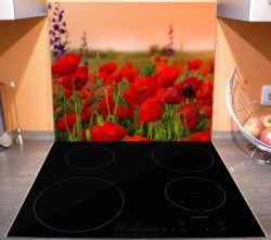 Herdabdeckplatte Mohnblumen auf dem Feld – Bild 3
