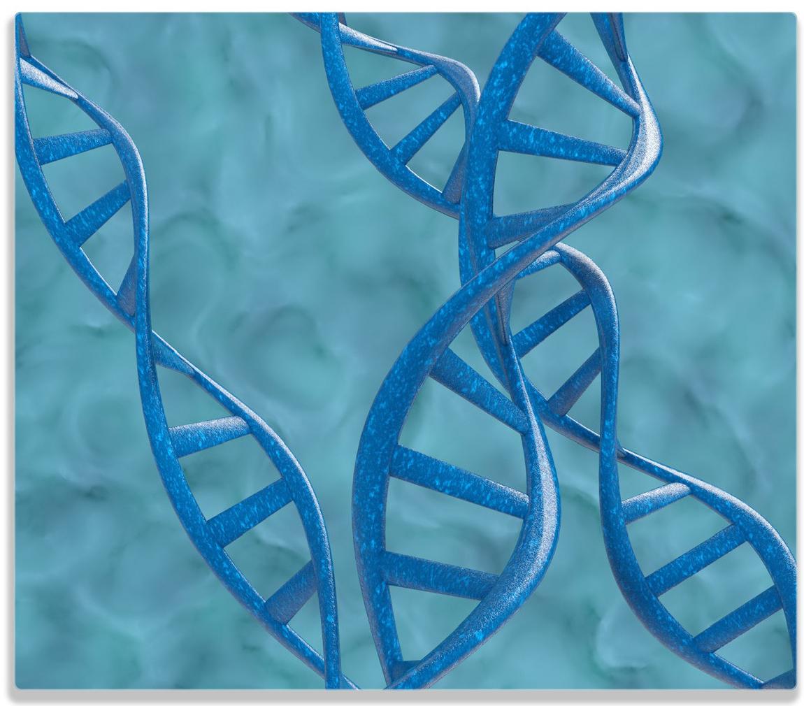 Herdabdeckplatte DNA-Strang in blau auf türkisem Hintergrund – Bild 1
