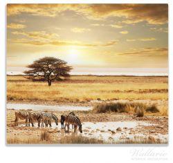 Herdabdeckplatte Safari in Afrika, eine Herde Zebras am Wasser – Bild 1