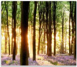 Herdabdeckplatte Blaue Hasenglöckchen im Wald mit Sonnenstrahlen – Bild 1