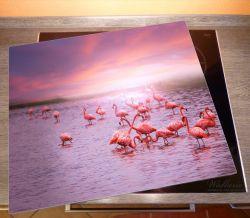 Herdabdeckplatte Rosa Flamingos bei Sonnenuntergang – Bild 2