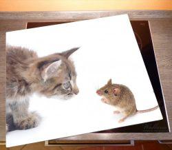 Herdabdeckplatte Katze und Maus beim Spielen - weißer Hintergrund – Bild 2