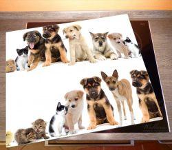Herdabdeckplatte Süße Haustiere - Katzen, Hunde, Hamster, Küken – Bild 2