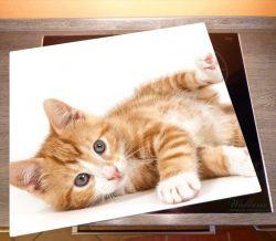 Herdabdeckplatte Süße Katze mit großen Augen - rot weiß getigert – Bild 2