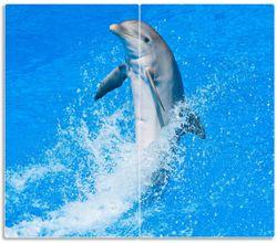 Herdabdeckplatte Fröhlicher Delfin im blauen Wasser – Bild 1