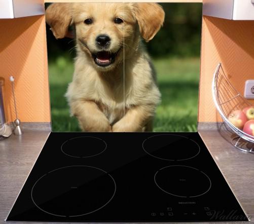 Herdabdeckplatte Süßer Hund - Golden Retriever – Bild 3