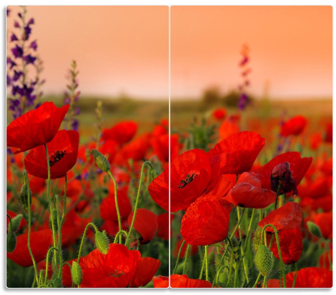 Herdabdeckplatte Mohnblumen auf dem Feld – Bild 1