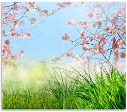 Herdabdeckplatte Kirschblütenzweige und grüne Wiese- Frühling – Bild 1
