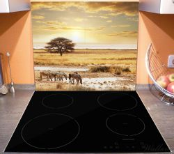 Herdabdeckplatte Safari in Afrika, eine Herde Zebras am Wasser – Bild 3