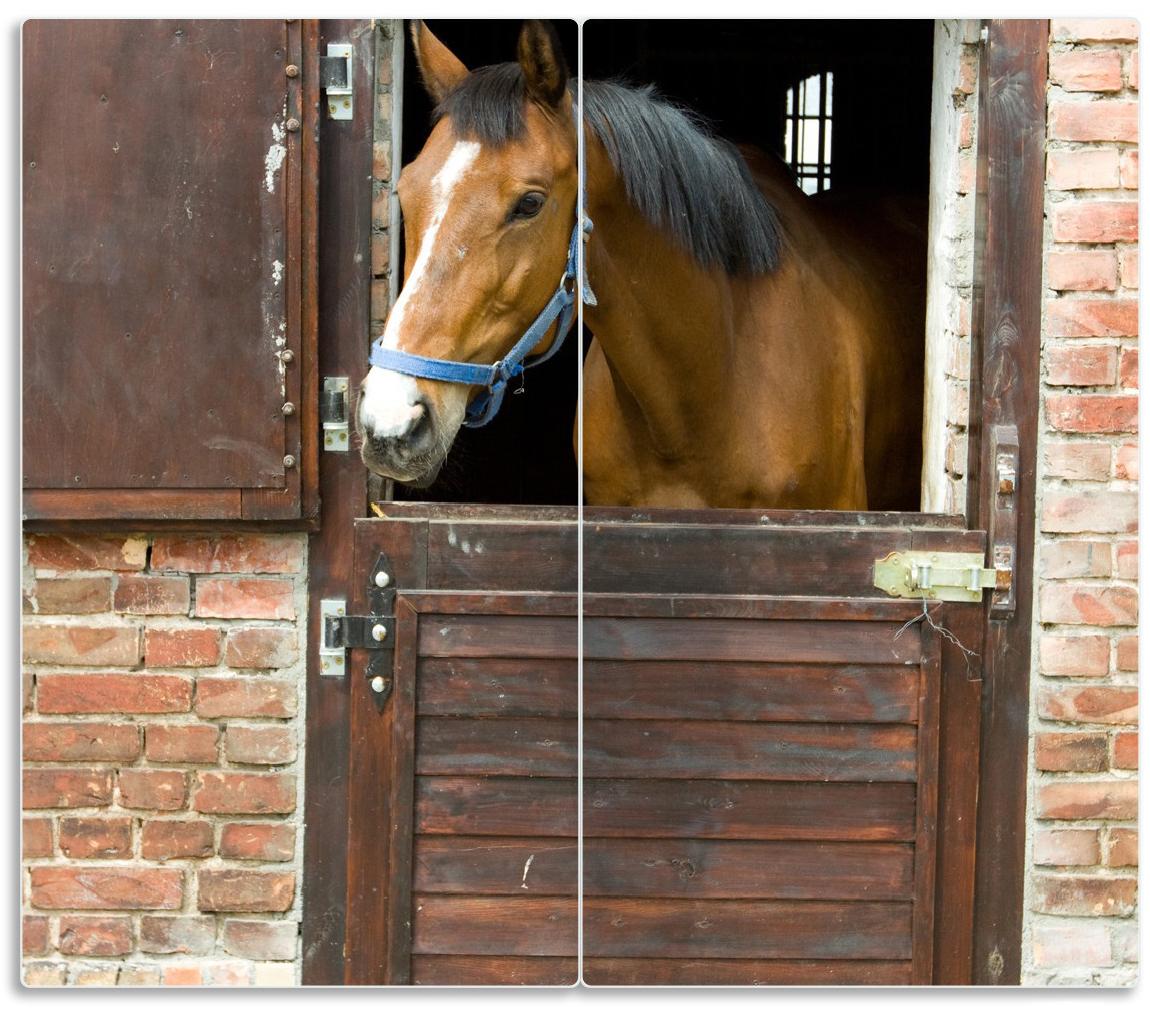 Herdabdeckplatte Pferd im Stall – Bild 1