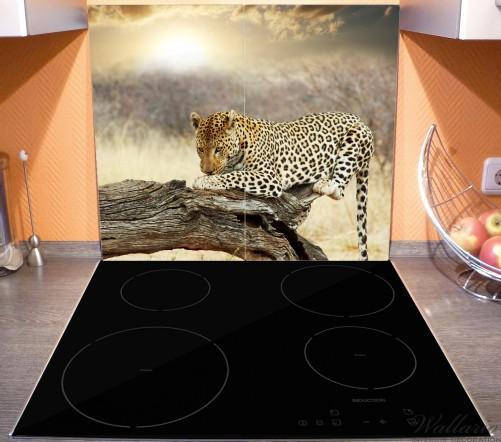 Herdabdeckplatte Leopard auf Baumstamm in Afrika – Bild 3