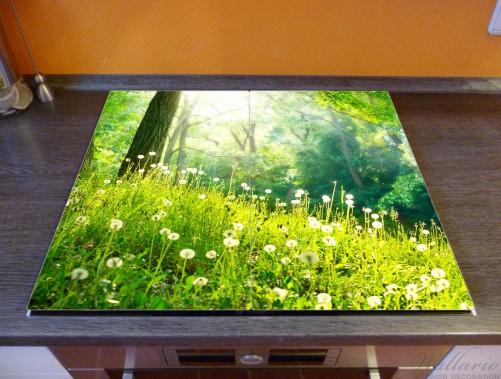 Herdabdeckplatte Pusteblumen im Wald mit einfallenden Sonnenstrahlen – Bild 2