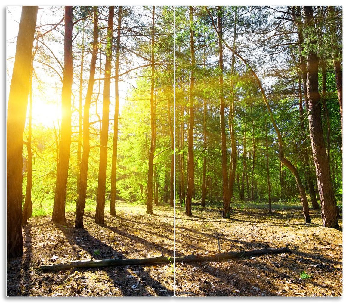 Herdabdeckplatte Sonnenstrahlen tief hinter dem Wald – Bild 1