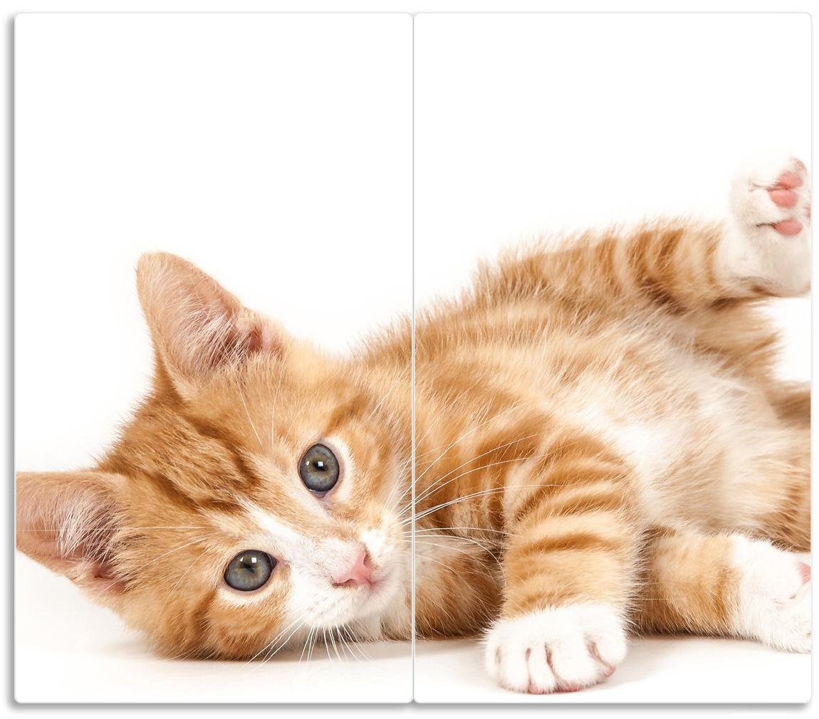 Herdabdeckplatte Süße Katze mit großen Augen - rot weiß getigert