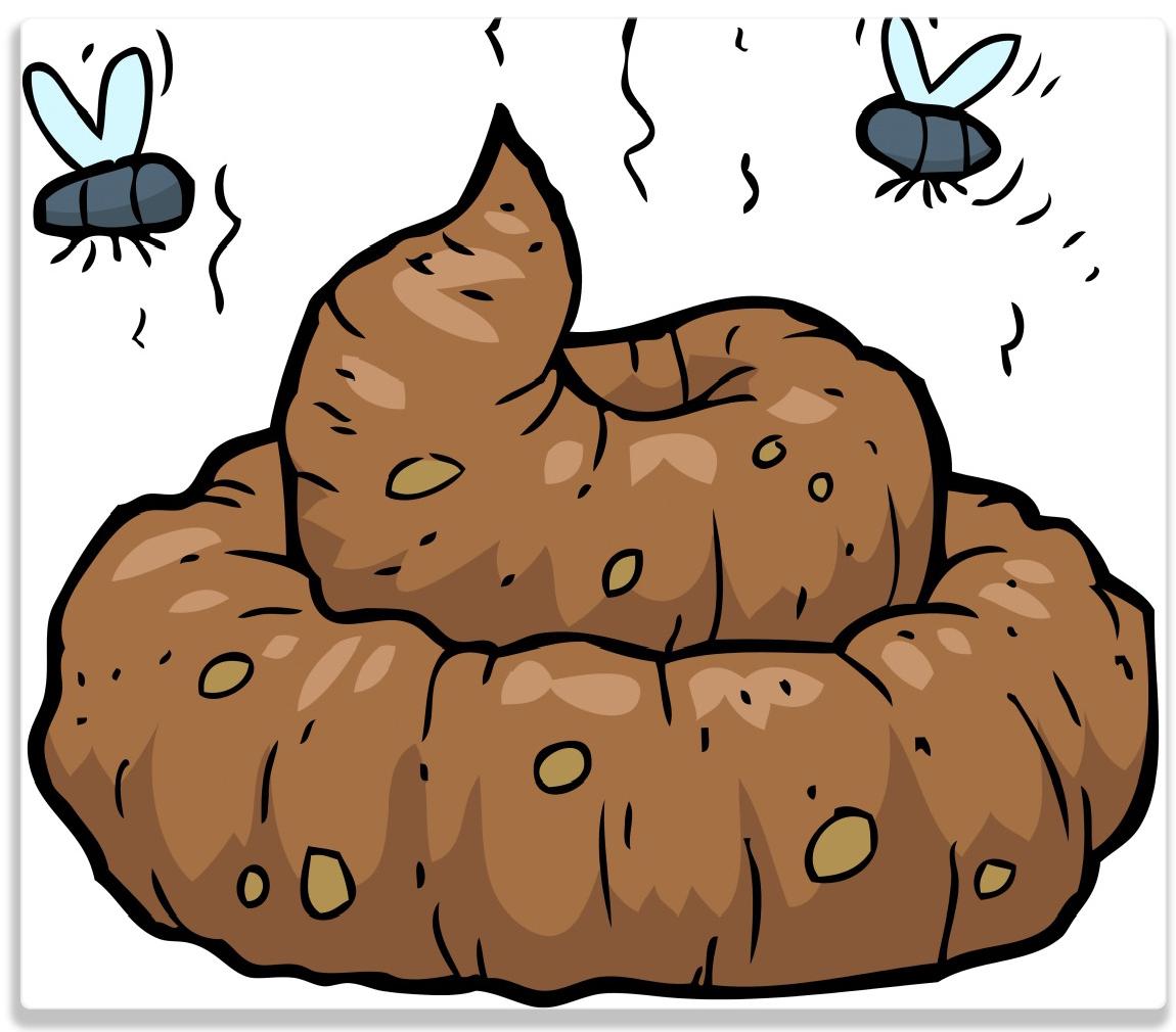 Herdabdeckplatte Comic Scheißhaufen mit Fliegen – Bild 1